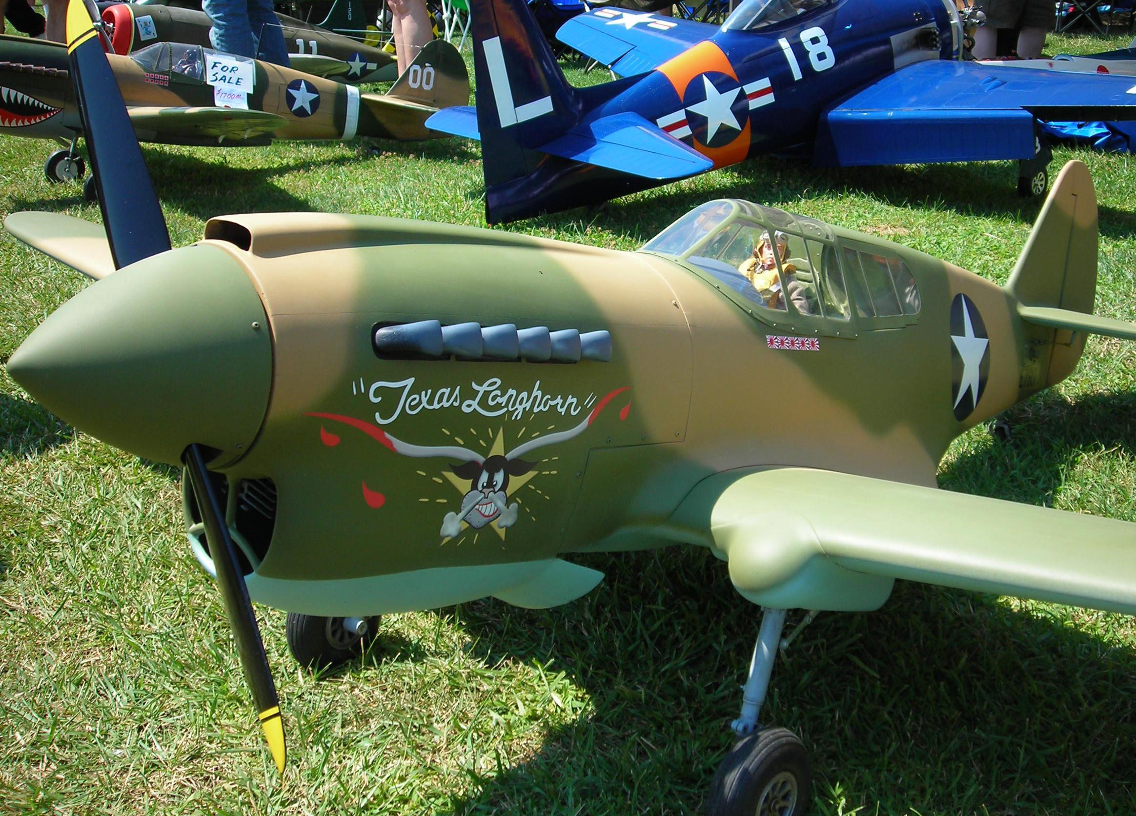 P-40 Warhawk 'Texas Longhorn' Vinyl Graphics