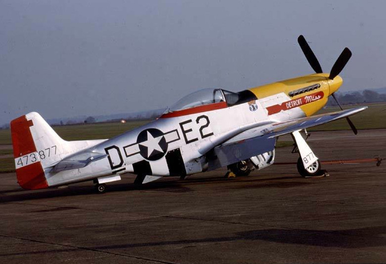 "P-51D Mustang (""Detroit Miss"") Vinyl Graphics"