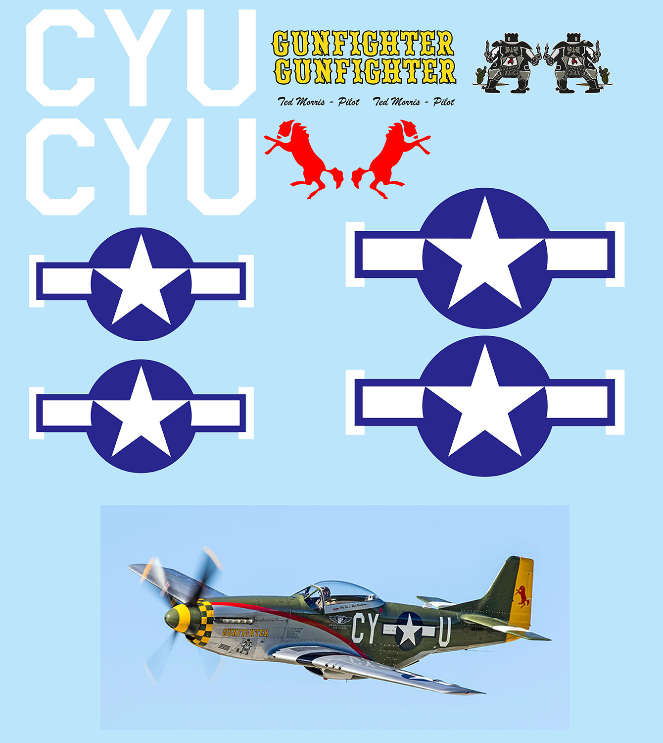 "P-51 Mustang ""Gunfighter"" Vinyl Graphics"